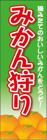 みかん4-1.jpg