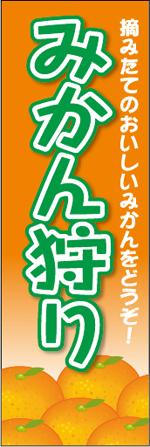 みかん5-1.jpg