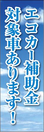 エコカー6.jpg